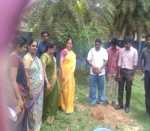 Tree plantation &Road Safety Awareness Programme